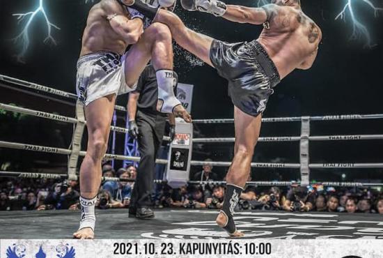 V. Muay Thai Kupa