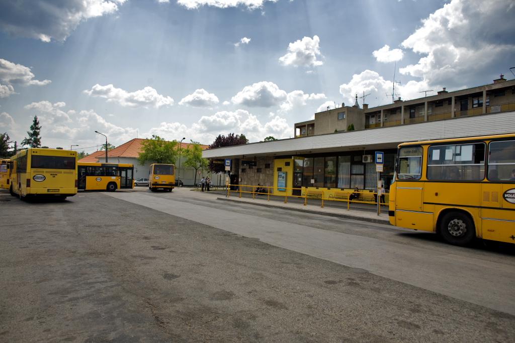 Újraindult a helyi buszjárat