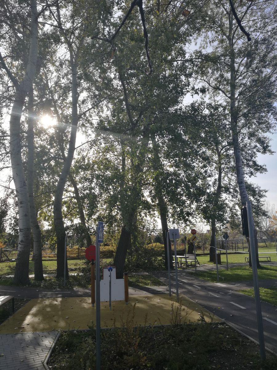 Balesetveszély miatt lezárták a Balassi utcai KRESZ park egy részét