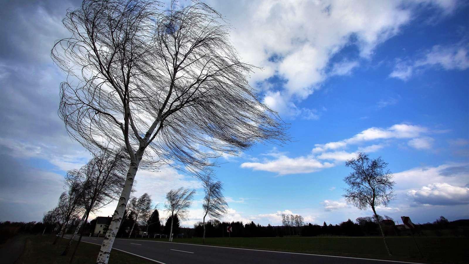 Tájékoztató a tavaszi időjárás veszélyeire való felkészülésről