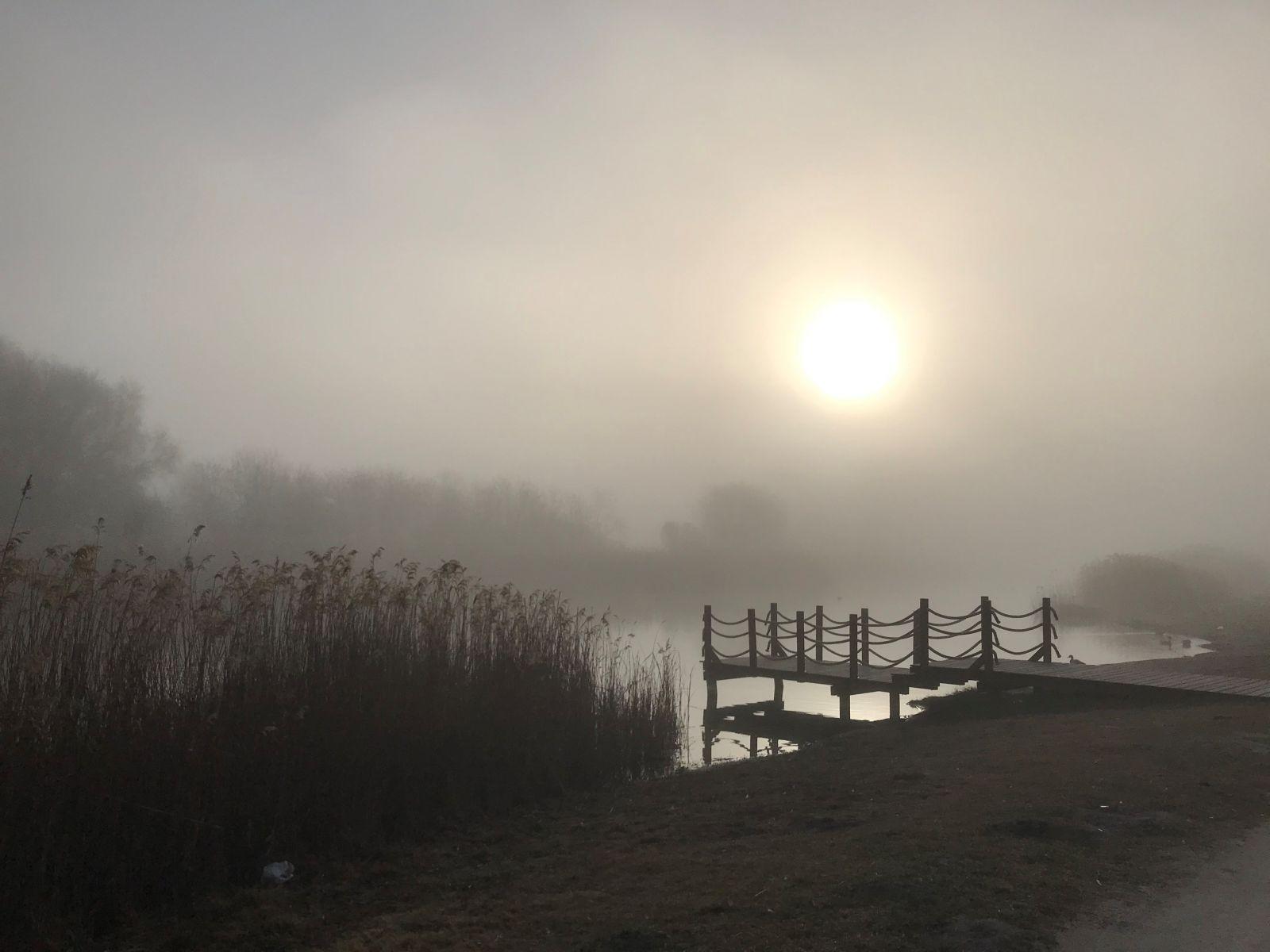 A hónap képe: Hajnal a tavon - Készítette: Láposi Katalin