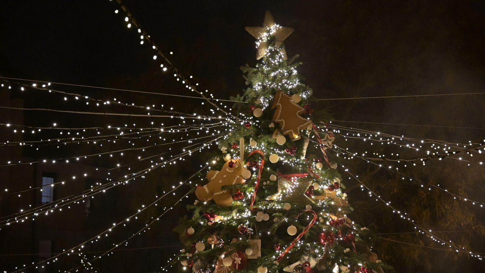 Áldott karácsonyt és boldog új évet kívánunk!