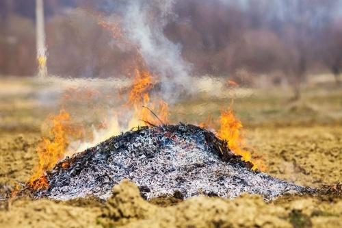 Május 23-ig, péntekenként engedélyezett az avar-, és kerti hulladékok égetése a monori belterületi ingatlanokon