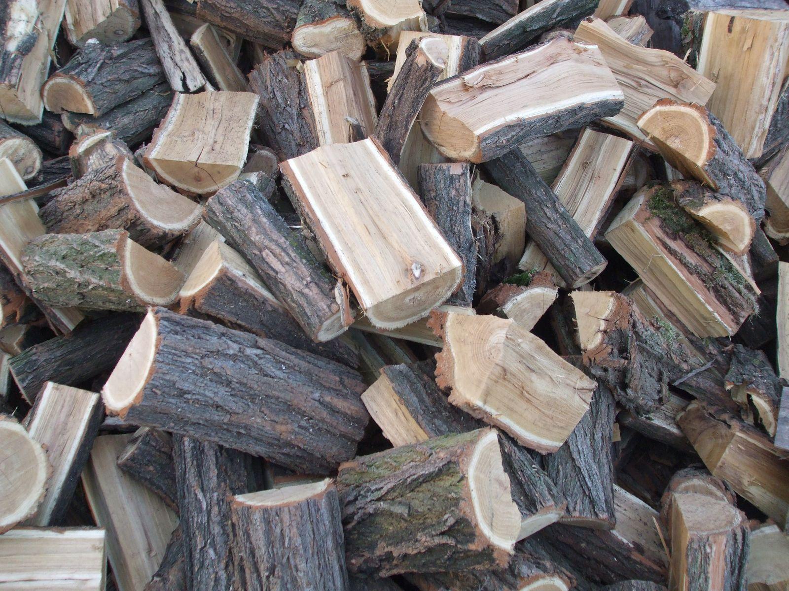Szociális tűzifa programmal segít az önkormányzat