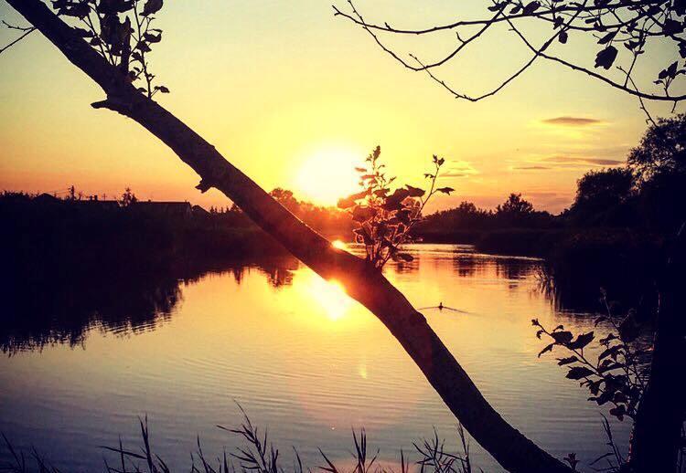 A hónap képe - Készítette: Nyári naplemente