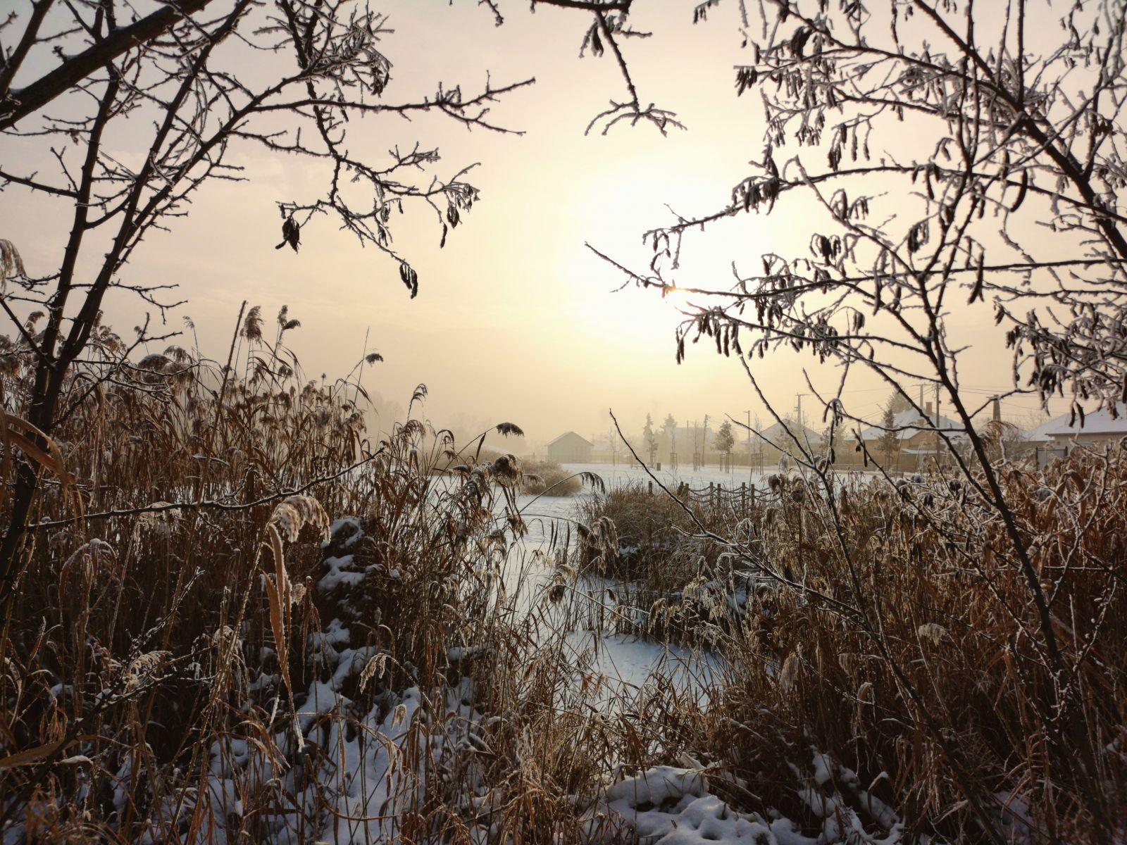 A hónap képe - Készítette: Téli álom