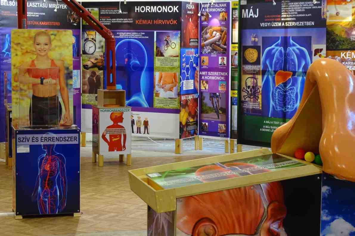 Testünk a csoda - interaktív kiállítás