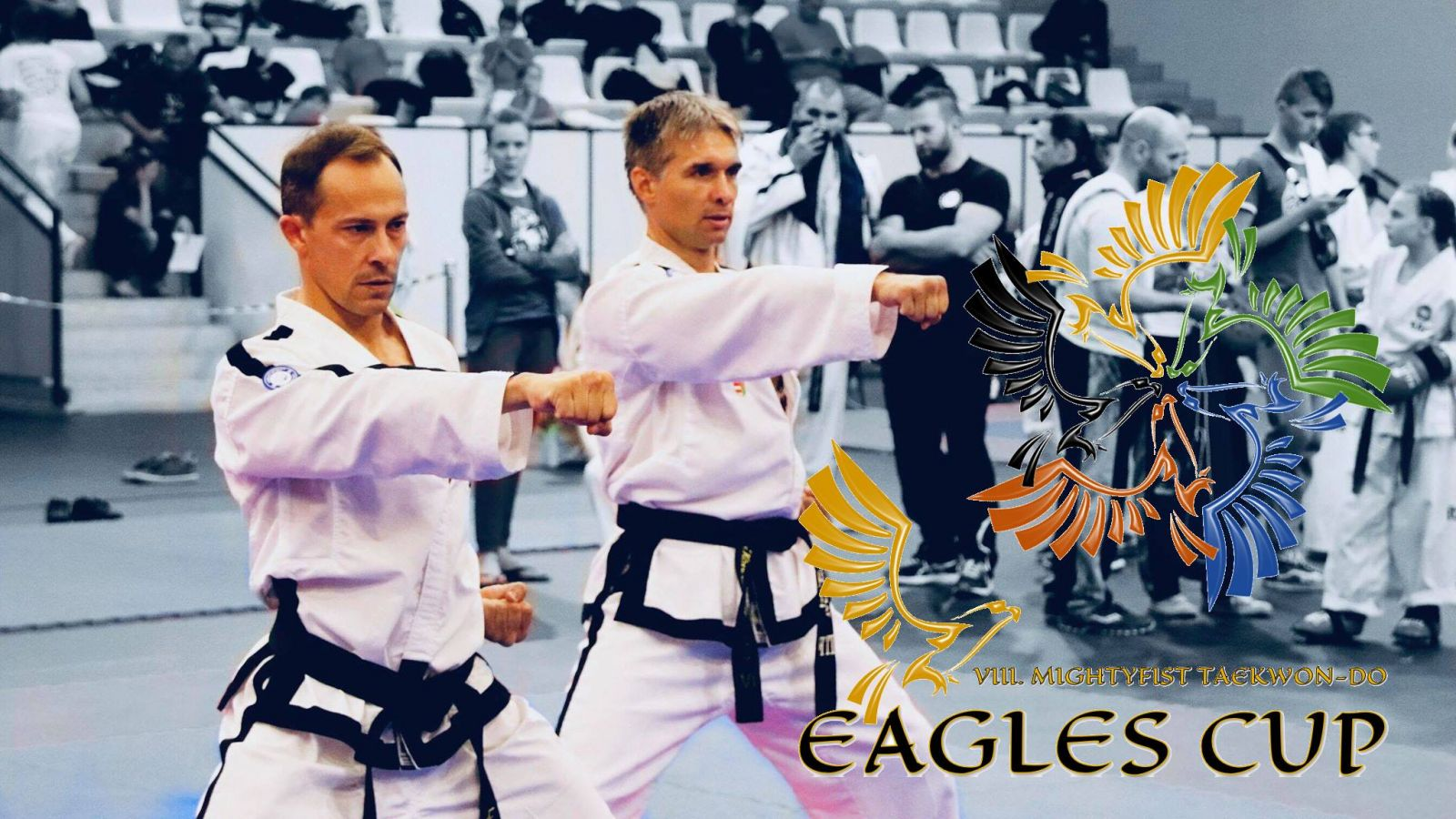 VIII. Mightyfist Eagles Cup taekwon-do verseny